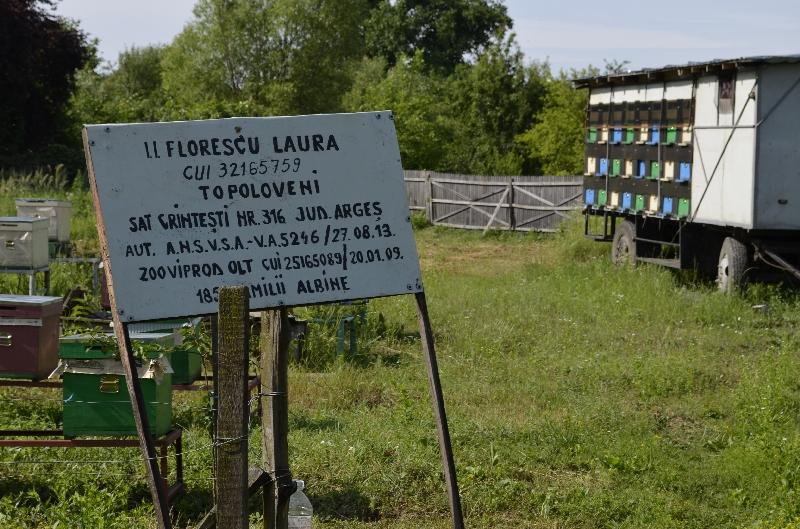 LEADER 2007-2013 în teritoriul GAL Drumul Carelor - o fotografie spune cât o mie de cuvinte